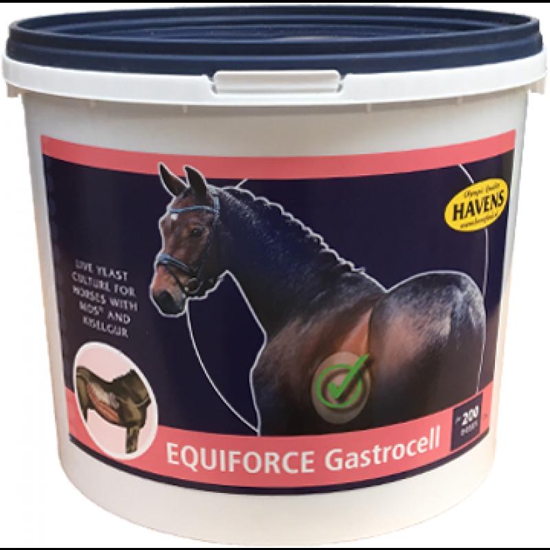 EquiForceGastrocell1kg-31