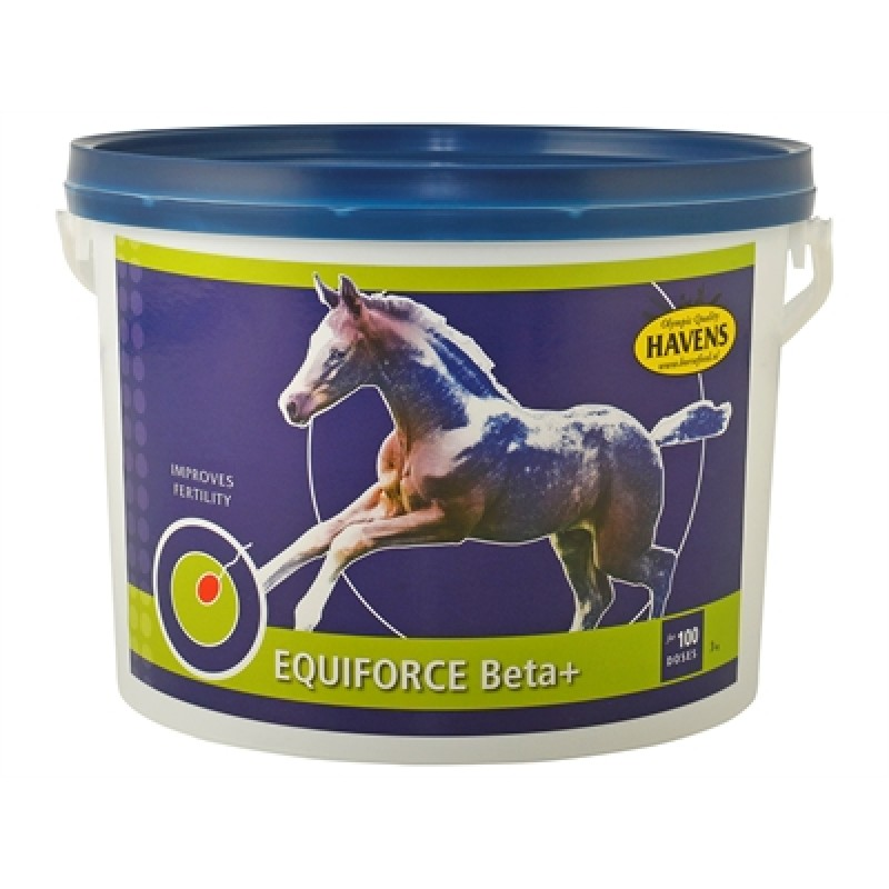 Equiforce Beta+ 3 kg-35