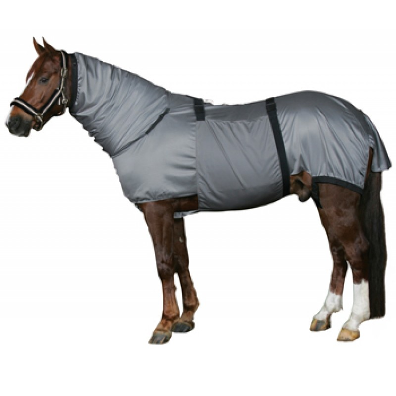 HorseGuardEksemdkken-33