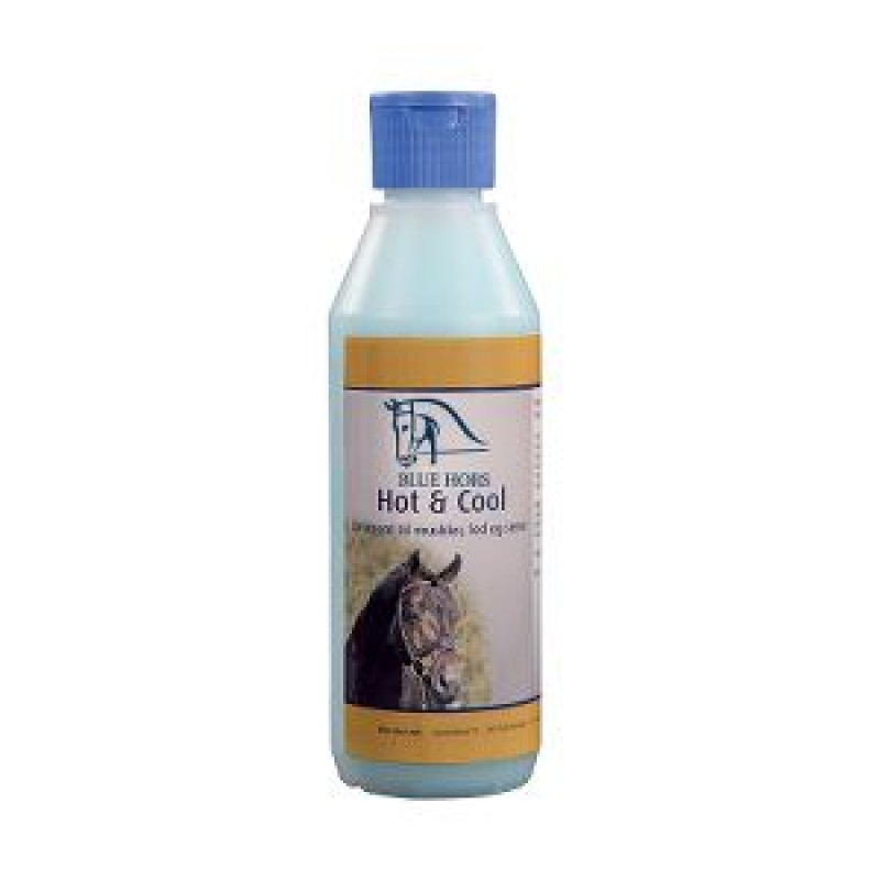 Blue Hors Hot and Cool 250 ml-31