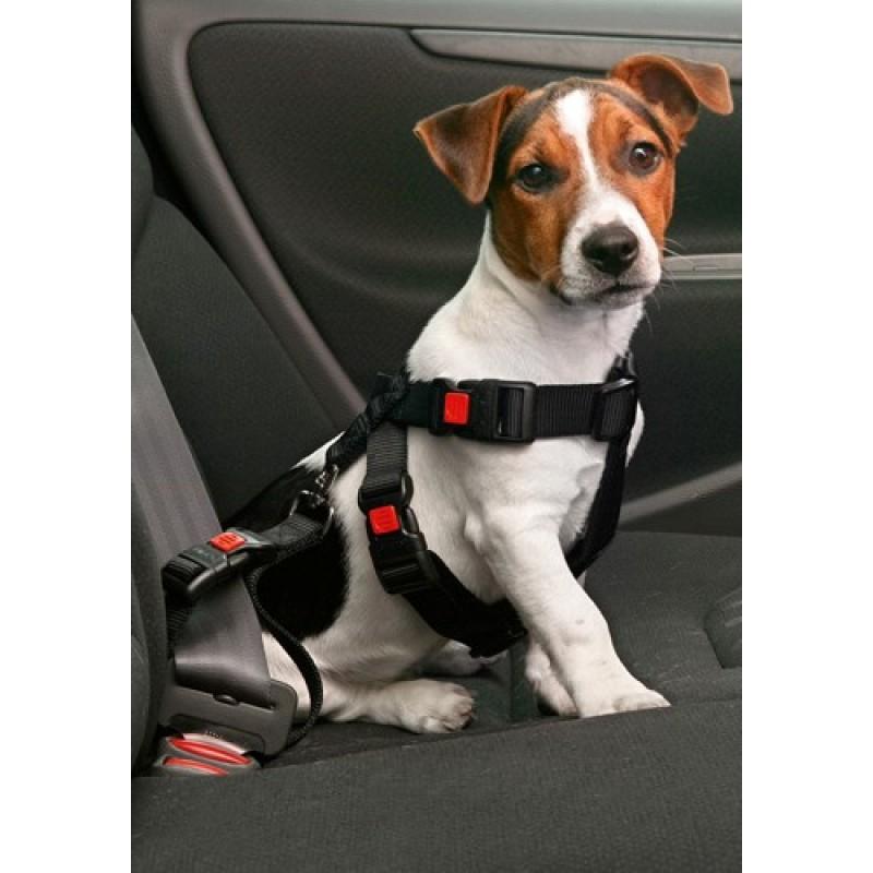 Sikkerhedsseletilhund-31
