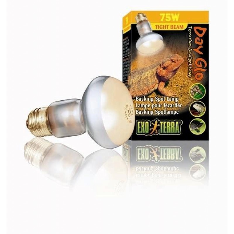 Day Glo Tight Spot 50 w-31
