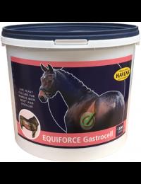EquiForceGastrocell1kg-20