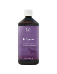BlueHorsBExpress1ltr-20