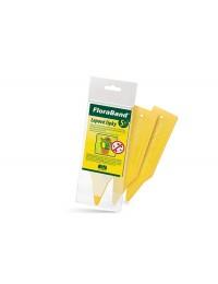 Florabandflowerprotection-20