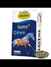 HavensGastro20kg-20