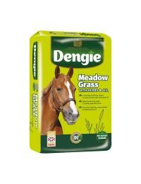 DengieMeadowGrass15kg-20