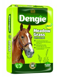 https://agroland.dk/media/catalog/product/m/e/meadow_grass_lhs.jpg